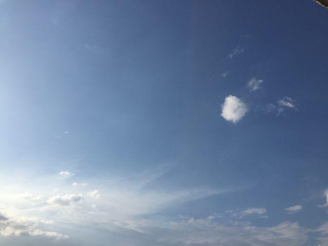 好天气呢!