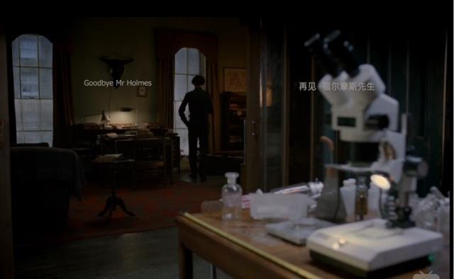 Goodbye Mr Holmes
