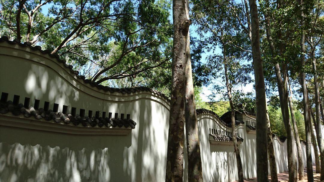 在悉尼的中国园林………老大一片 瞬间让我怀疑了下身在何方……