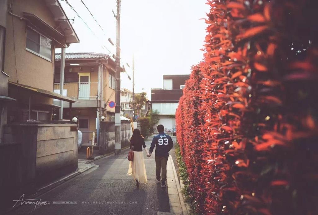 被同学一张照片戳了泪腺,我们本也相约樱花季去日本…现在却是两条经过了交叉点的线…