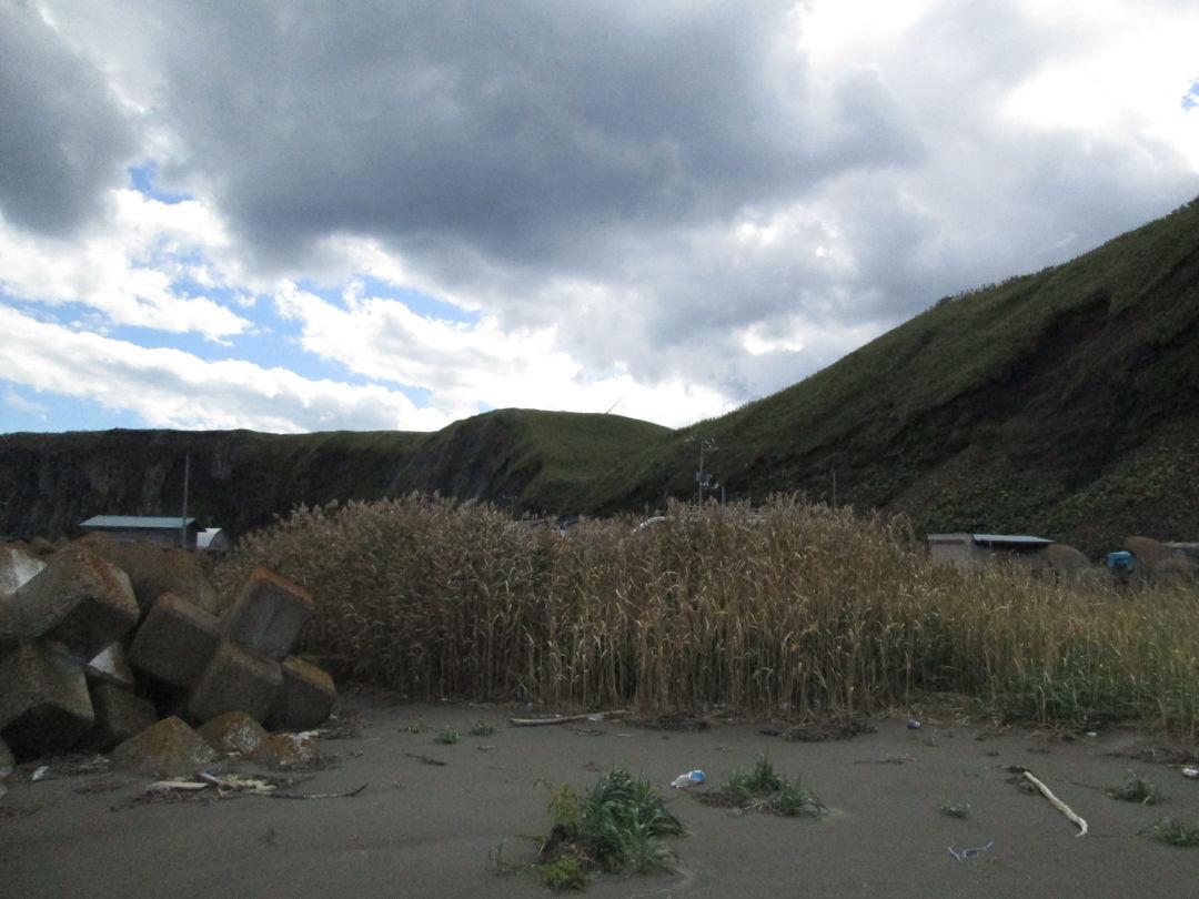 20171002-20171006 釧路/厚岸/根室 [知床半岛] (临时航次和岩石采样); 20171008 我让妹妹很讨厌