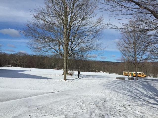 学校四月飞雪了。。。
