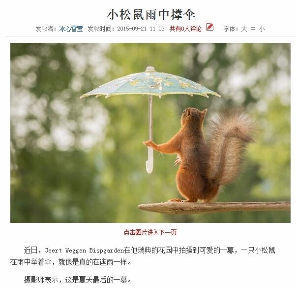 首先,我想知道,这把伞是哪里来的?