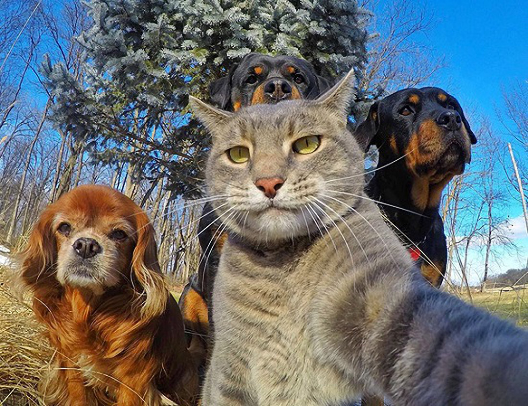 Hi! Everyone, Me and my buddys hang out in the park enjoy the good times!... :q