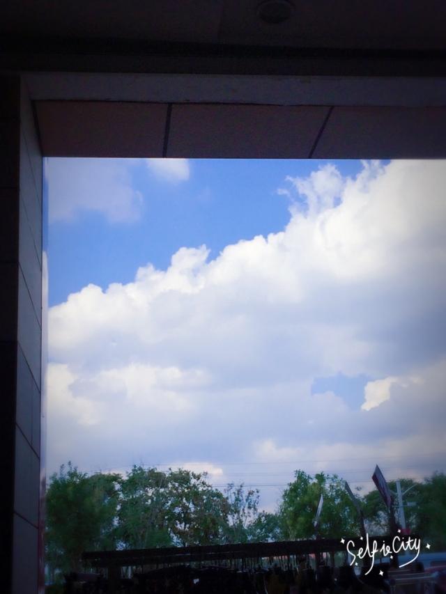 这么好的天气我却在上班!!