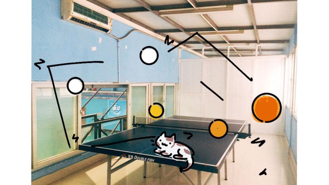 打乒乓球打出了理论体系,很棒了哈哈哈