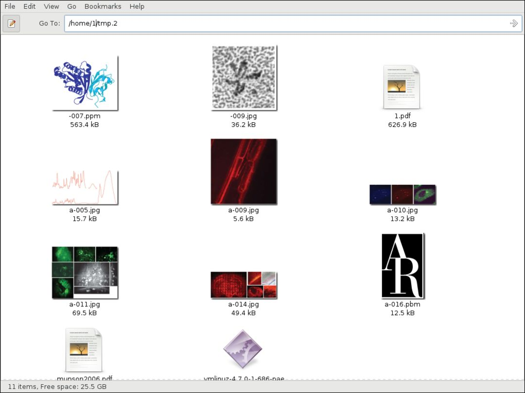 survey of x11 file manager image preview