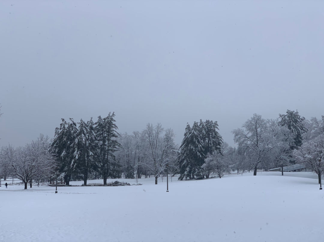 雪天真的好棒啊