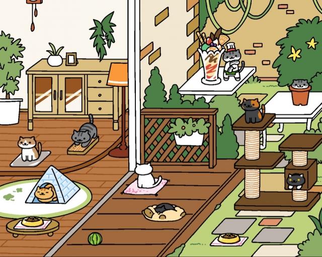 今天看到猫咪们满堂的样子被感动到了。。(V) (°,,,,°) (V)