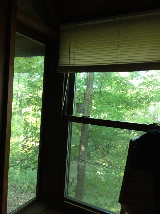 周日早晨起来听着树叶被风吹动的声音莫名地有种回到小学六年级的感觉