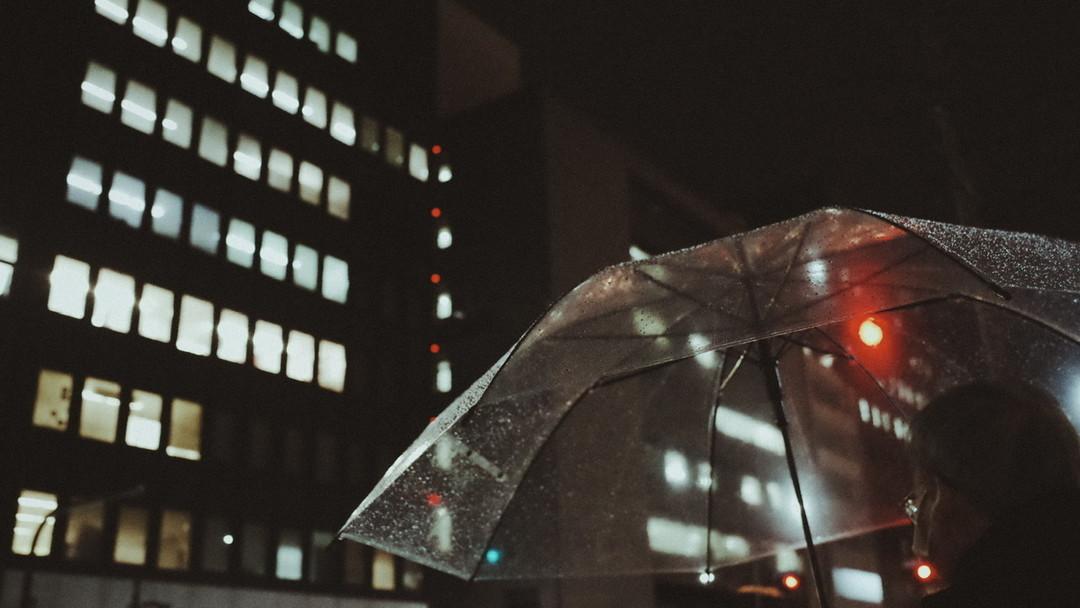 冷雨夜里伴我归家