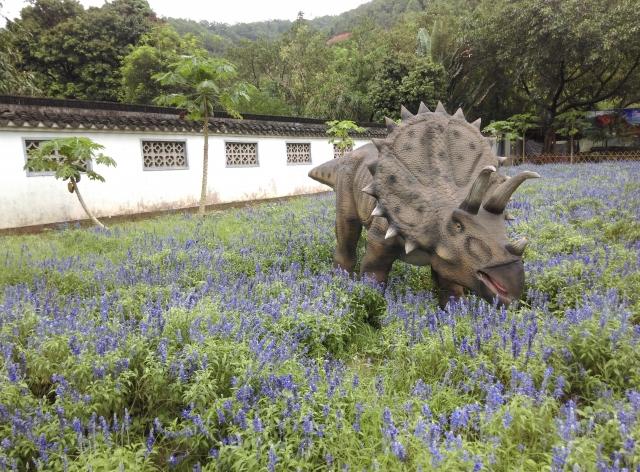 薰衣草是恐龙的浪漫(≧▽≦)