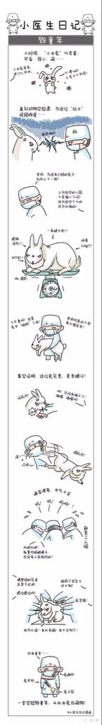 兔叽的恐怖…