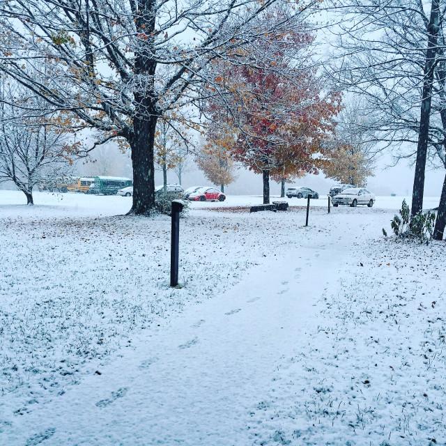 今天忽然下了场大雪,一下子就积起来了