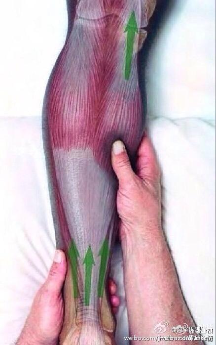 腿部按摩方法~
